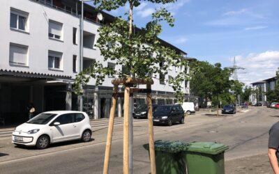 Offenburg – Wasserkonzept